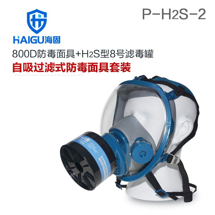 海固800D全面罩+HG-ABS/P-H2S-2滤毒罐 硫化氢活性炭防毒面具