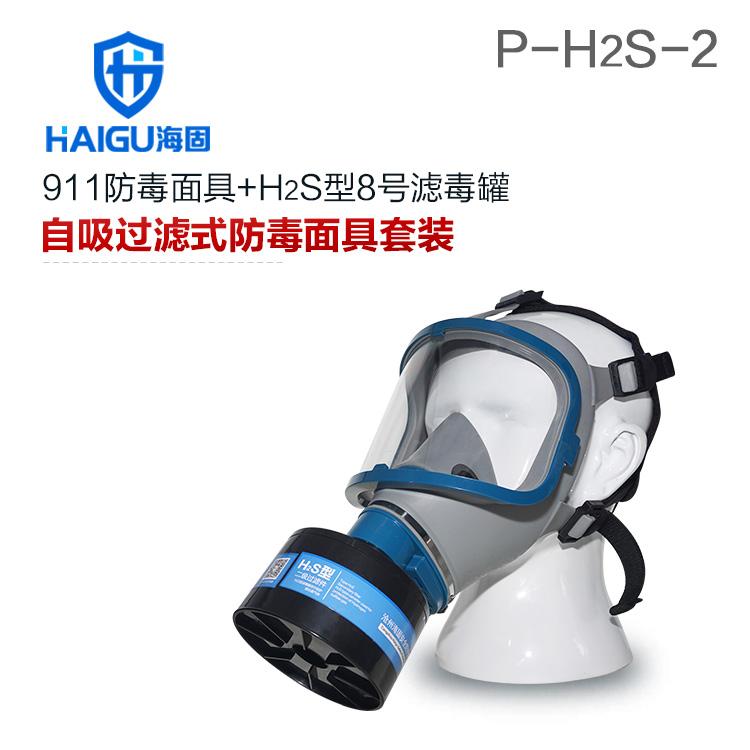 海固911全面罩+HG-ABS/P-H2S-2滤毒罐 硫化氢活性炭防毒面具