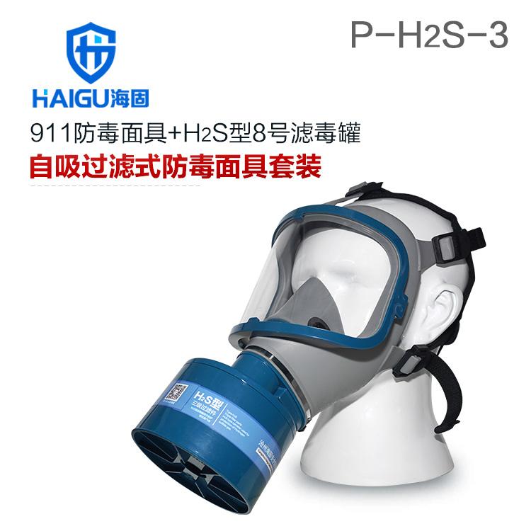海固911全面罩+HG-ABS/P-H2S-3滤毒罐 硫化氢活性炭防毒面具